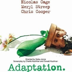 adaptation-index-image