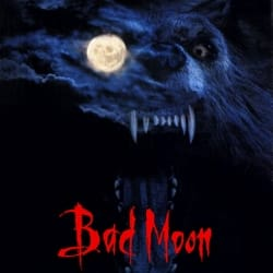 bad-moon-index-image