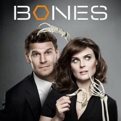 bones-index-image