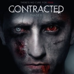 contracted-phase-2-index-image