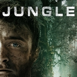 jungle-index-image