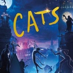 cats-index-image-250x250