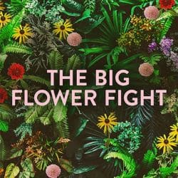 Big Flower Fight