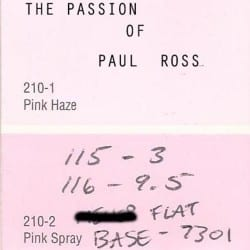 Passion of Paul Ross, The